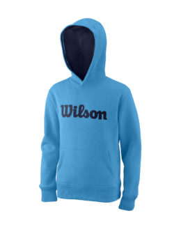 WRA769212_0_SS20_Training_Y_Script_Cotton_PO_Hoody_Coastal_Blue.png.cq5dam.web.2000.2000